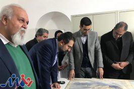 چند پروژه هنری در کرمان آغاز شد