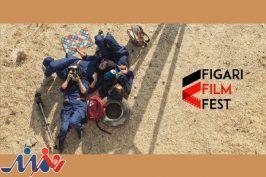 «خورشیدگرفتگی» در جشنواره فیگاری ایتالیا